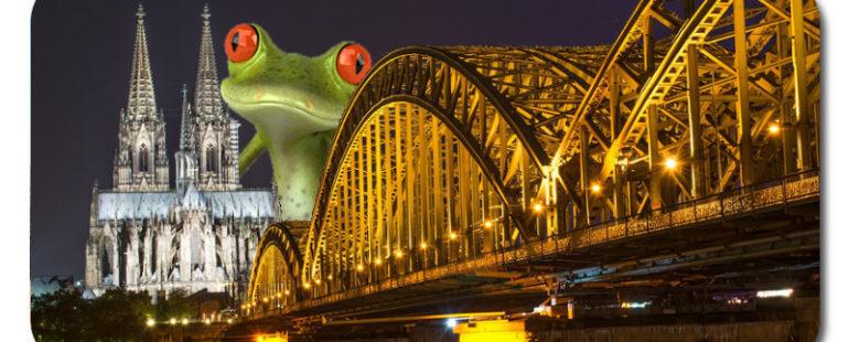 Kostengünstig nach Köln umziehen mit Umzugsunternehmen