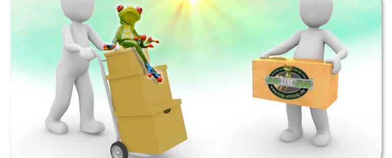 Kompetente Umzugshelfer & Möbelpacker begleiten Sie beim Umzug